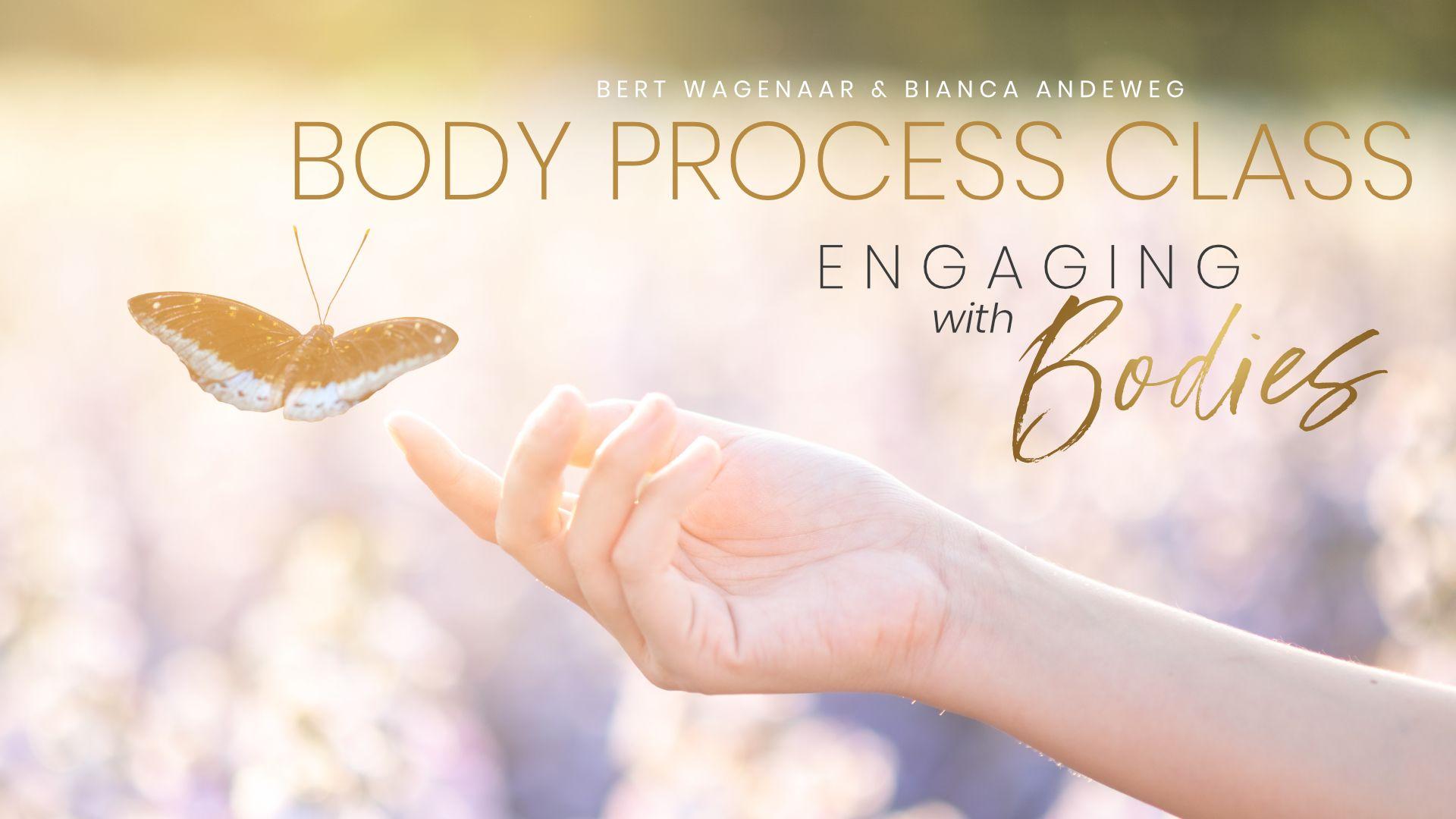 Access Body Process Class